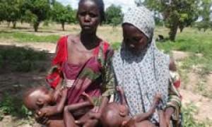 बोको हराम की हिंसा से 70 लाख लोग भुखमरी से जूझ रहे है - संयुक्त राष्ट्र