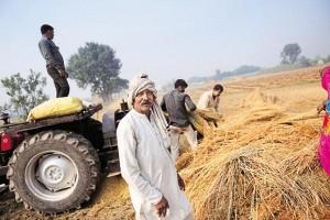 मोदी सरकार ने माना नोटबंटी से किसानों को हुआ बड़ा नुकसान